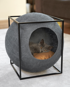 Figure 2: Hidden sphere cat