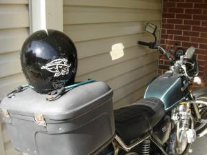 Cuttlefish Helmet!