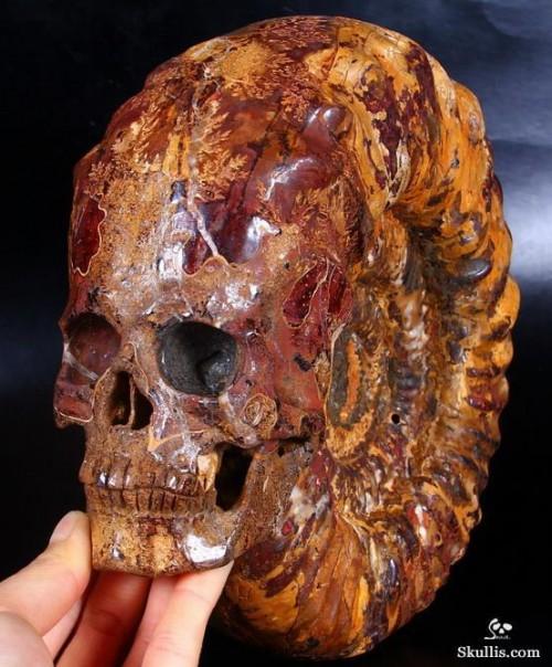 carvedskull