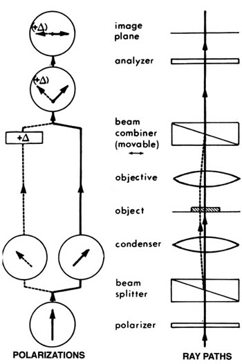 dic_diagram