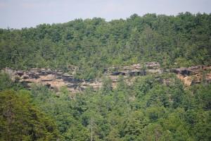wonder-al-Daniel-Boone-Nat-Forest-KY-c868b4_z-300x200