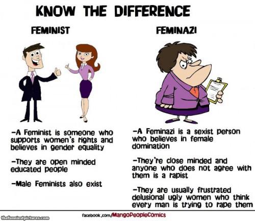 feminist-feminazi1