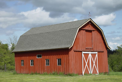 Everything existing in the universe is the fruit of chance for Farm shed plans