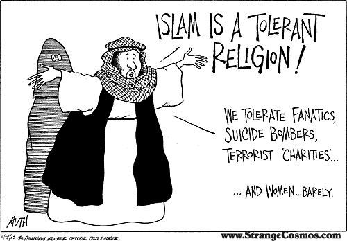 Muslim Cartoon1