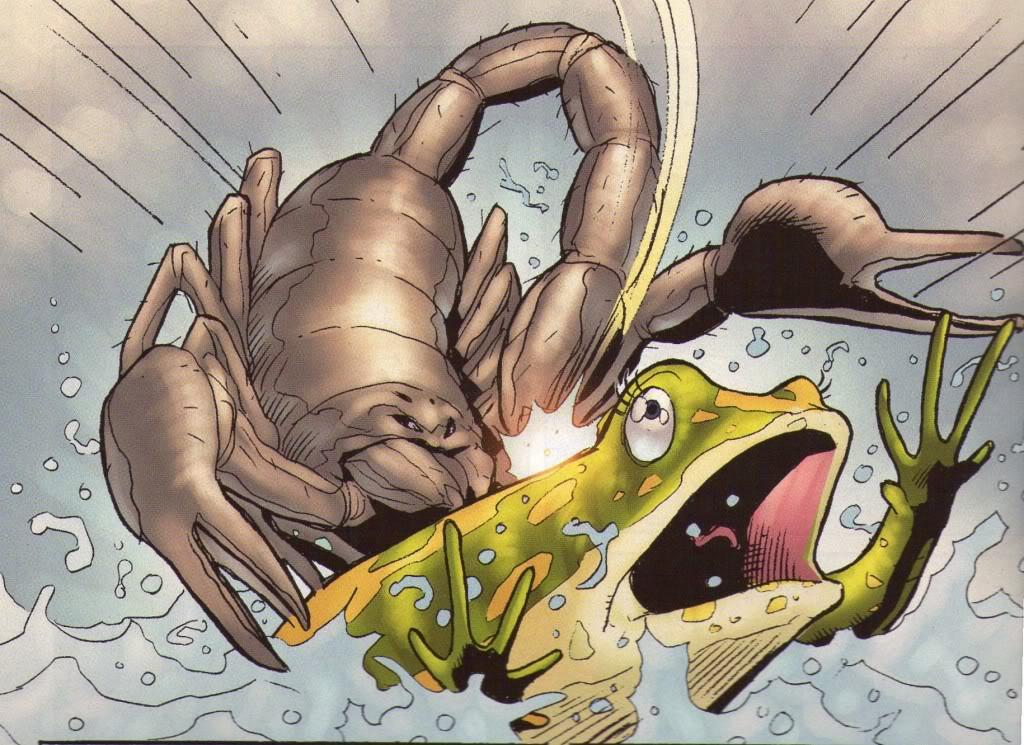 scorpion-frog