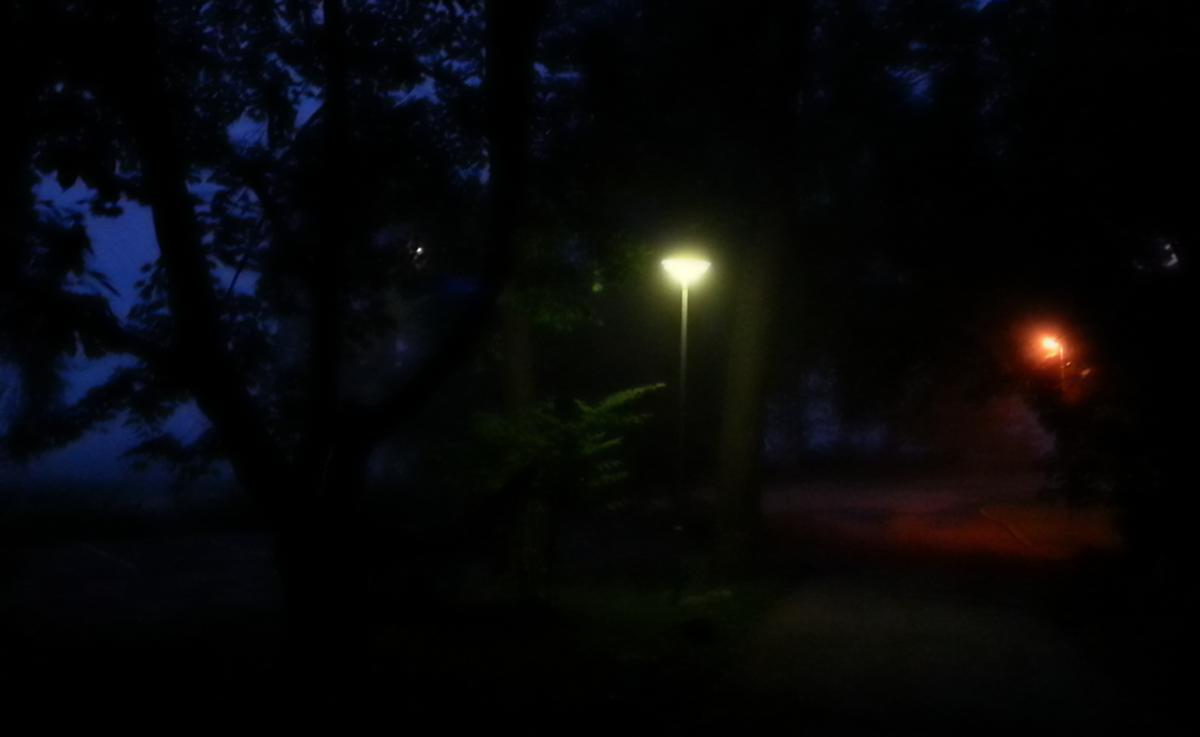 Midsummer night fog and light.