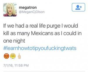 Megan-Olson-tweet