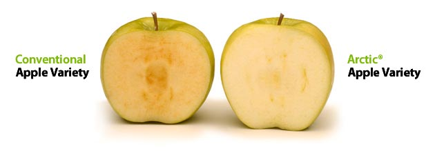 Arctic® apples vs regular apples.