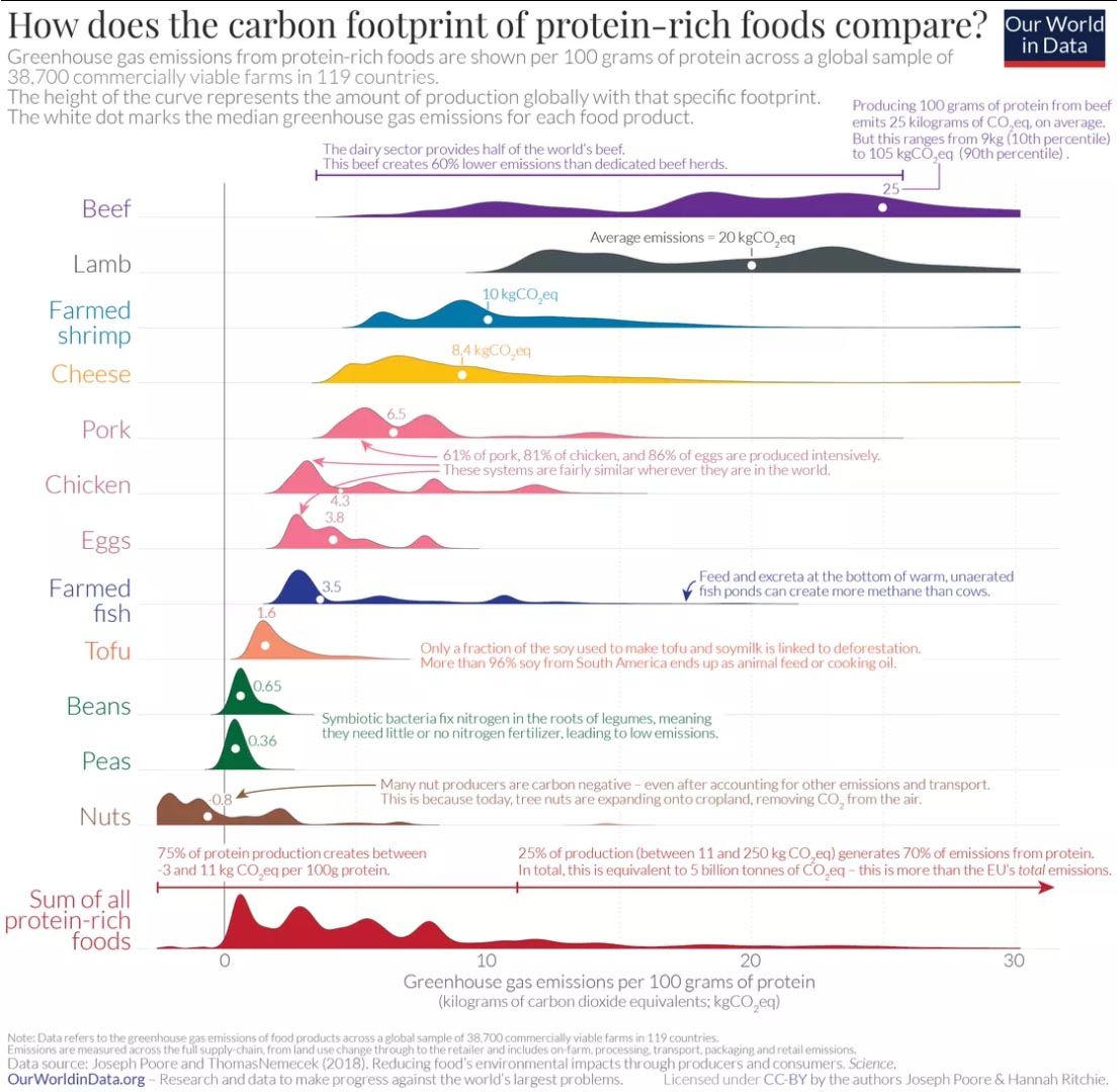 Carbon footprint of protein foods.