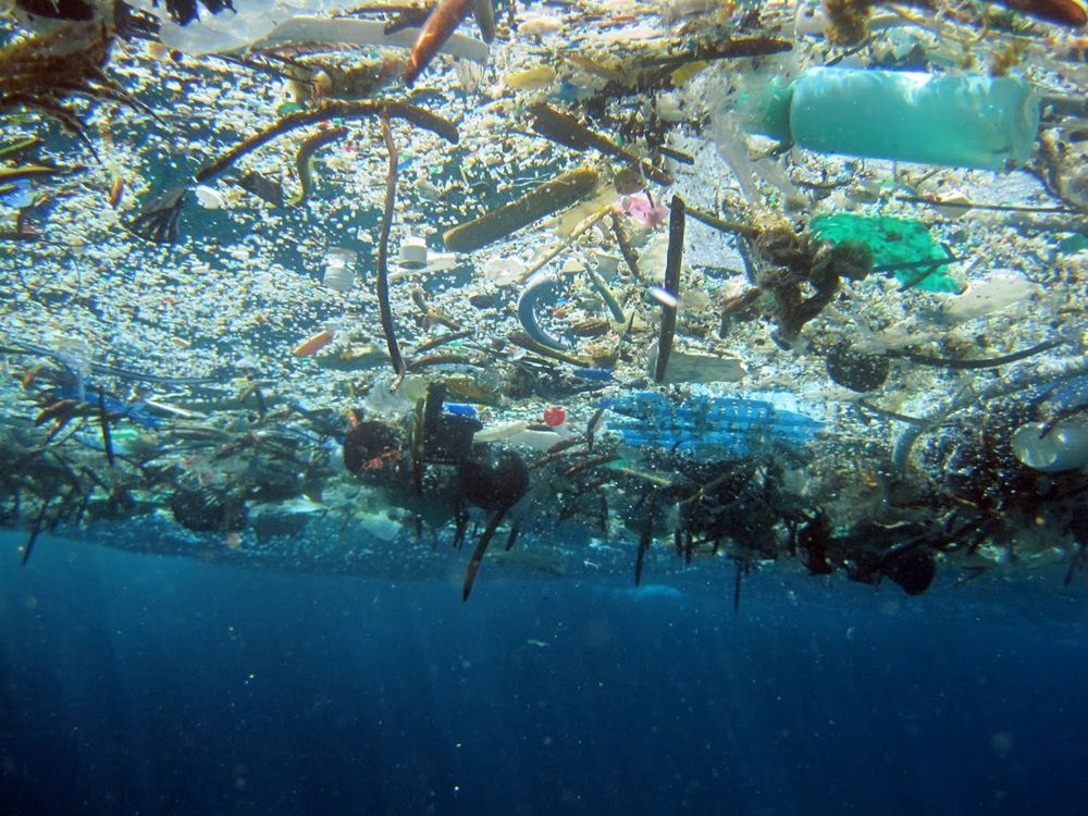 Marine debris at the Great Pacific Garbage Patch