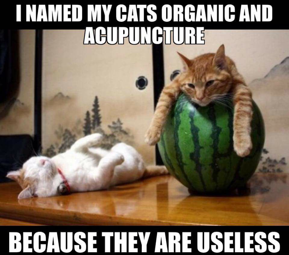 organic and acupuncture