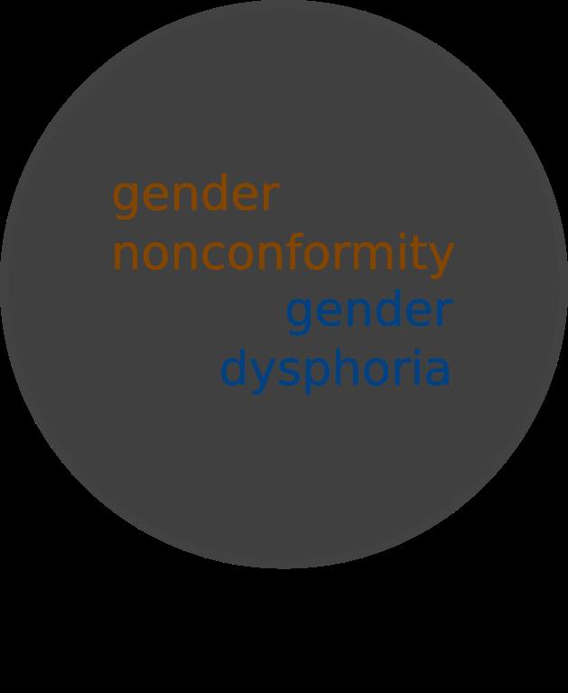 """Gender Identity Disorder"" in the DSM 4."