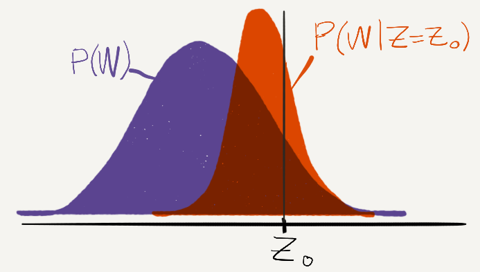 A plot of the probability distribution P(W) as well as P(W|Z=Z_0). The center of P(W|Z=Z_0) is somewhere between Z_0 and the the center of P(W).