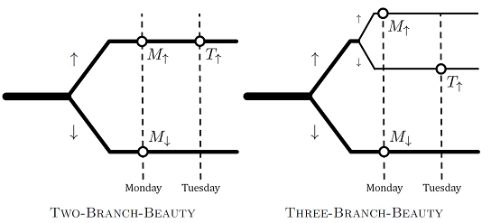 The Two-Branch-Beauty diagram shows the universe splitting into two branches, one where Sleeping beauty wakes up on Monday, and the other where she wakes up on Monday and Tuesday. The Three-Branch-Beauty diagram shows two branches, but one of the branches splits further into a Monday branch and a Tuesday branch.