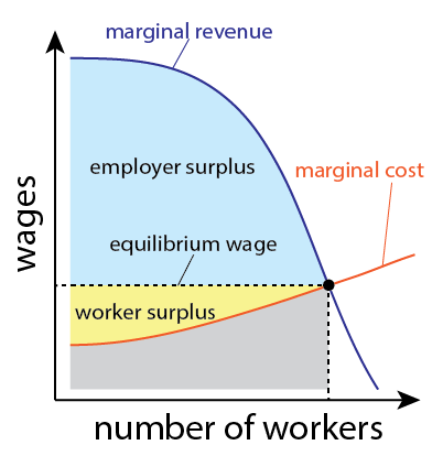 "A graph whose axes are ""number of workers"" and ""wages"". The graph has two curves, labeled ""marginal cost"" and ""marginal revenue"". The intersection of the two curves determines the equilibrium wage and workforce size. Two regions of the graph are labeled the employer surplus and worker surplus."