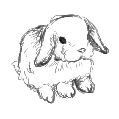 mini lop coloring pages | my art | The Jenome