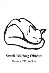 Cover of Small Waiting Objects by T.D. Walker