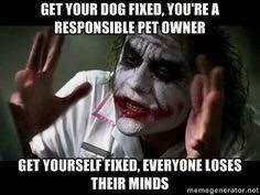 Responsible pet owner