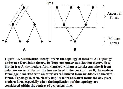 stabilizationtheory