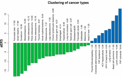 Stochastic (replicative) factors versus environmental and inherited factors: R-tumor versus D-tumor classification. The adjusted ERS (aERS) is indicated next to the name of each cancer type. R-tumors (green) have negative aERS and appear to be mainly due to stochastic effects associated with DNA replication of the tissues' stem cells, whereas D-tumors (blue) have positive aERS. Importantly, although the aERS was calculated without any knowledge of the influence of environmental or inherited factors, tumors with high aERS proved to be precisely those known to be associated with these factors.