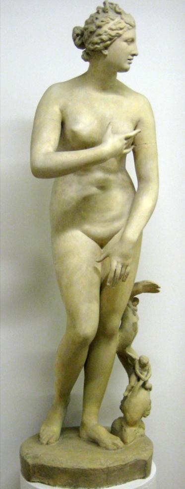 Venus_medici