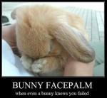 bunnyfacepalm