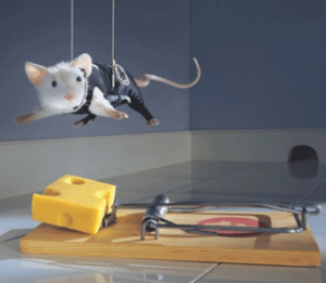 missionmouse