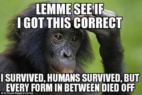 Lemme see if I got this correct.I survived, humans survived, and every form in between died?