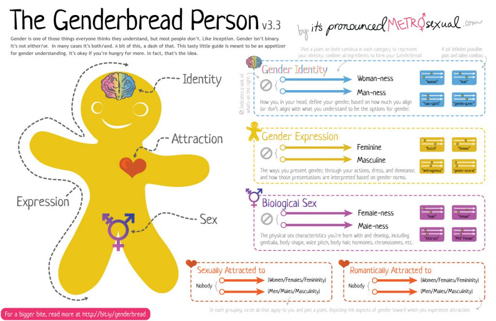 The Genderbread Person, version 3.3. From http://itspronouncedmetrosexual.com/2015/03/the-genderbread-person-v3/
