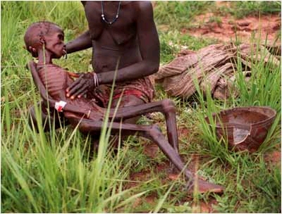 in the near east and north africa 19 million in developed countriesHungry People In Africa