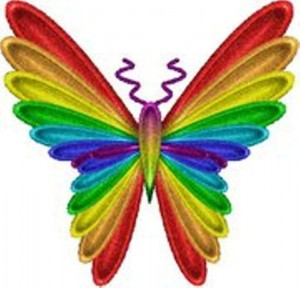 buterfly rainbow resized new