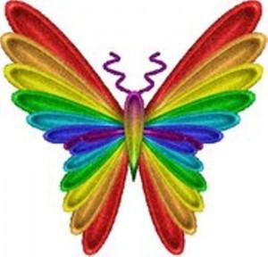 buterfly rainbow resized new
