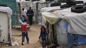 syrian 7