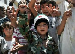 syrian 8